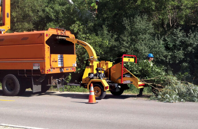Commercial Tree Services-Del Mar CA Tree Trimming and Stump Grinding Services-We Offer Tree Trimming Services, Tree Removal, Tree Pruning, Tree Cutting, Residential and Commercial Tree Trimming Services, Storm Damage, Emergency Tree Removal, Land Clearing, Tree Companies, Tree Care Service, Stump Grinding, and we're the Best Tree Trimming Company Near You Guaranteed!
