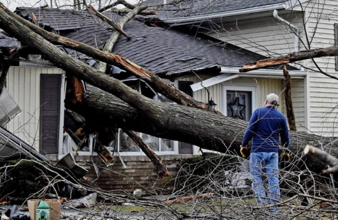 Storm Damage-Del Mar CA Tree Trimming and Stump Grinding Services-We Offer Tree Trimming Services, Tree Removal, Tree Pruning, Tree Cutting, Residential and Commercial Tree Trimming Services, Storm Damage, Emergency Tree Removal, Land Clearing, Tree Companies, Tree Care Service, Stump Grinding, and we're the Best Tree Trimming Company Near You Guaranteed!
